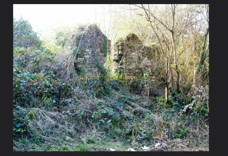 Burnt Mills Ruins - Flickr